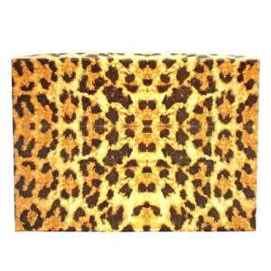 display gift box BX2875 7inch 100pc leopard