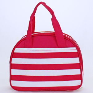 cc20 AK 23 nautical stripe lunch box fuchsia white