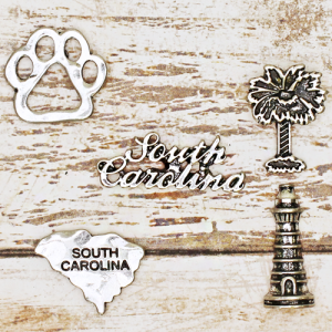 lapel pin 017 12 Tipi South Carolina pin set silver